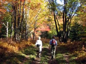 Vermont, Spain, Ireland hiking tours