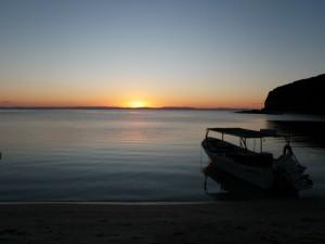 sunset-ponga