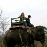 Tiger Safari, Nepal - Boundless Journeys
