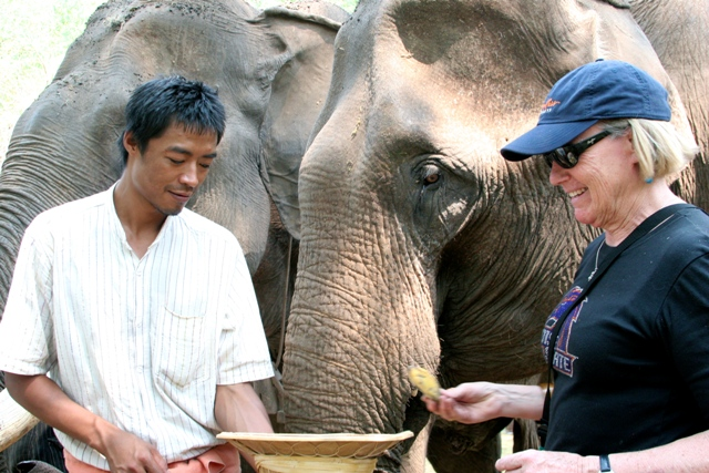 Guest with Elephant