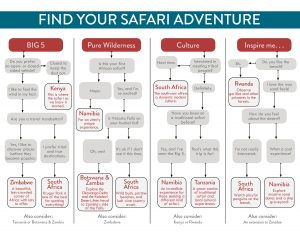 Choose your african safari