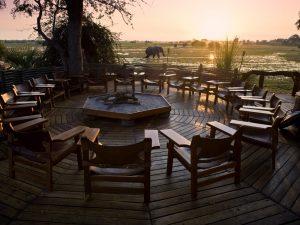 Elephants Okavango Delta