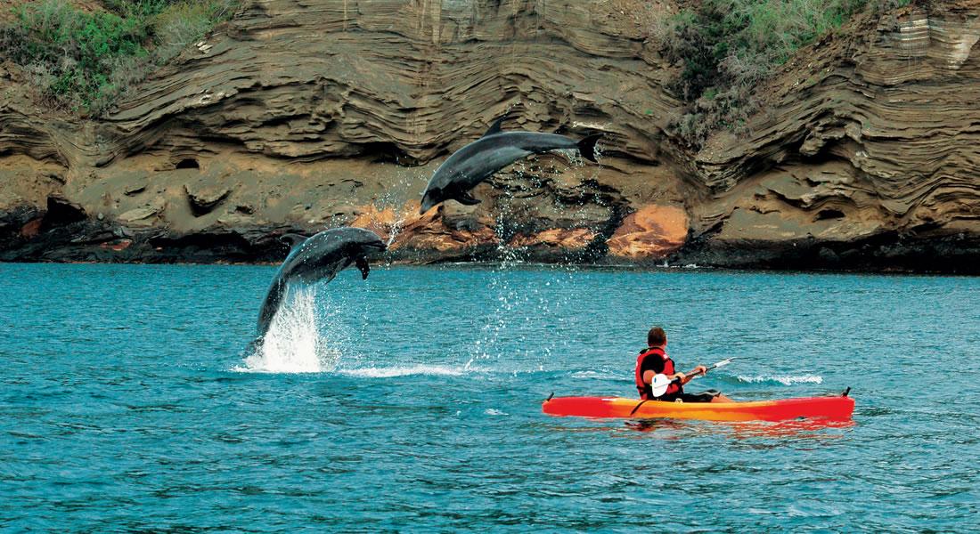 Kayaking at Galapagos National Park